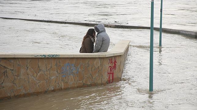 El Ebro comienza a desbordarse en Castejón