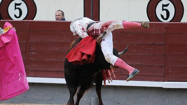 El novillero Rafael Cerro, herido en la ingle en Las Ventas