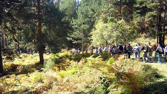 La Sierra de Guadarrama ya puede presumir de ser un Parque Nacional