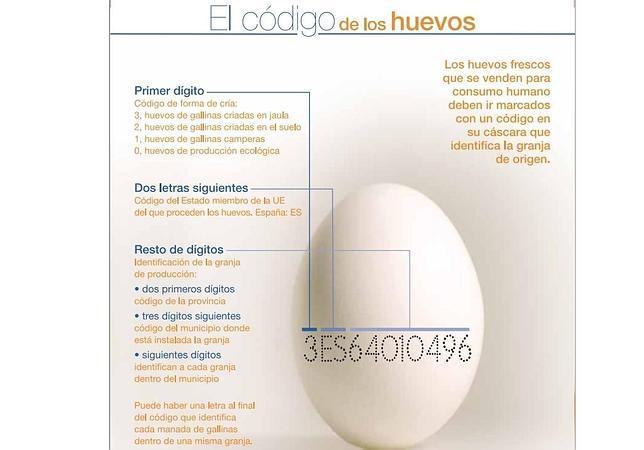 Huevos ecológicos, camperos, de jaula... ¿en qué se diferencian?