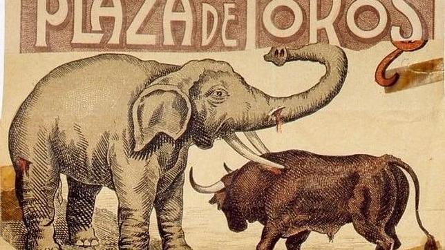 ¿Por qué en la antigua Grecia y Roma había coliseos? Plaza-toros-madrid-elefante-toro--644x362