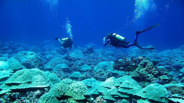 La reserva marina contará con dos millones de kilómetros cuadrados protegidos