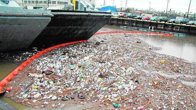 El plástico que lanzamos al mar puede convertirse en microplástico, más dañino para la fauna marina