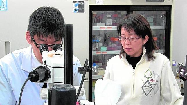 La responsable del Instituto Riken, Masayo Takahashi, una de las impulsoras del primer implante mundial de células iPS en humanos