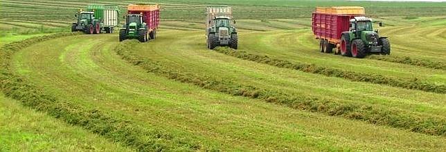Cosecha de alfalfa en el Valle del Ebro