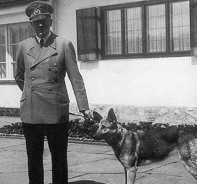 La Cruel Muerte De Blondi La Perra De Adolf Hitler