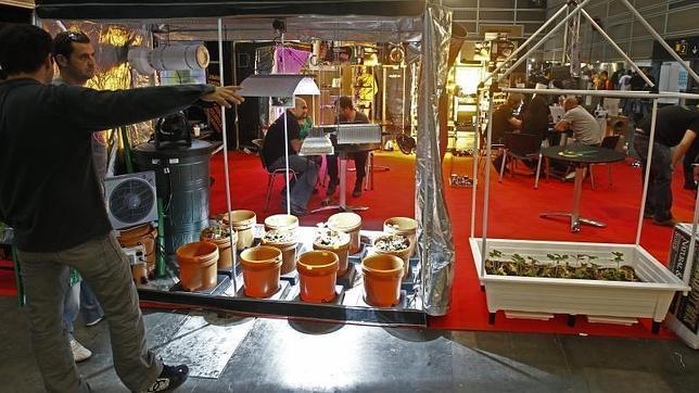 """Feria GrowMed, el mayor certamen sobre cannabis terapéutico en España, que promociona el autocultivo responsable del cáñamo y los usos medicinales de esta planta y reclama una legislación """"más clara"""""""