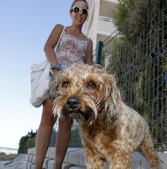 La mayoría de los canes no actuó por propio interés y prefirió priorizar a su amo