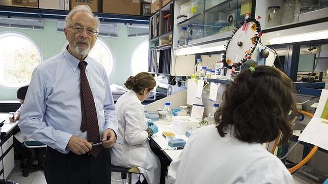 El virólogo Luis Enjuanes en el laboratorio del Centro Nacional de Biotecnología