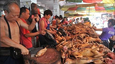 La tradición del Festival de la carne de perro de Yulin, en la provincia de Guangxi, comenzó en 1990