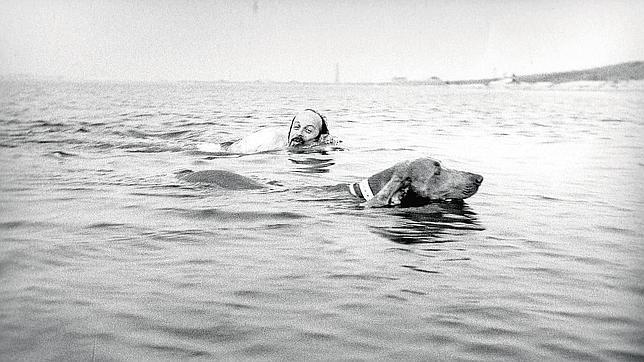 El escritor E. L. Doctorow con su perro Becky
