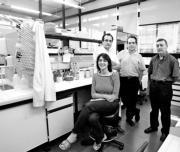 El equipo de investigadores en los laboratorios del Instituto Cavanilles.ISRAEL GARCÍA