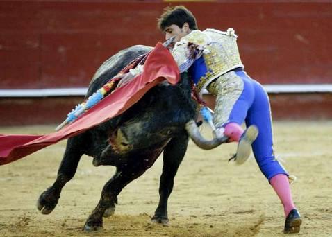 La emoción del toro serio