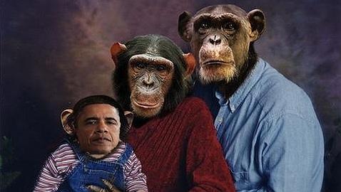 Una dirigente del Tea Party compara a Obama con un chimpancé