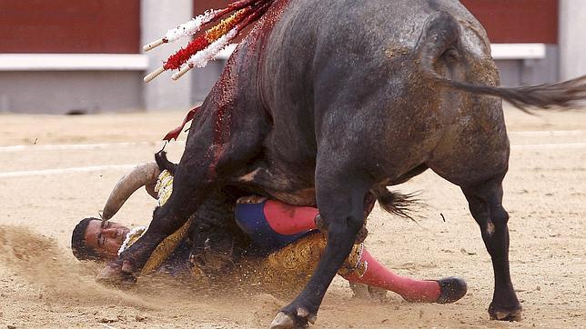 Ignacio Garibay: «Una cornada es algo muy torero»