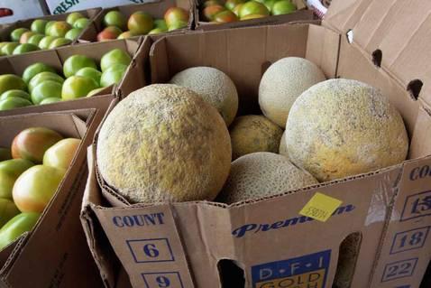 Ascienden a 18 los muertos en EE.UU. por melones infectados de listeriosis