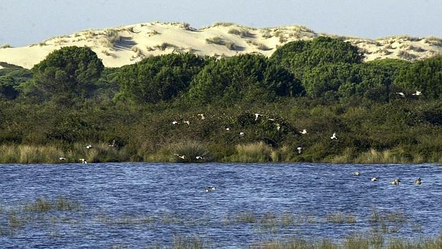 WWF celebra el Día Mundial de los Humedales pidiendo «cambios urgentes» en la gestión del agua