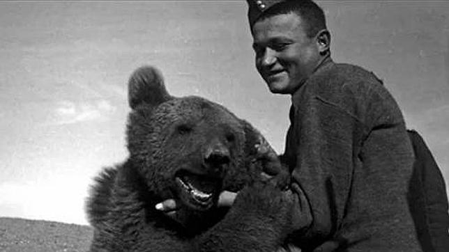 La historia de «Wojtek», el oso pardo amante de la cerveza que luchó contra los nazis