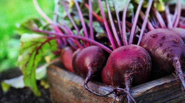 Remolacha: pocas calorías y mucha fibra para tu dieta