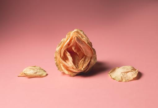 que usar para picazon en la vulva