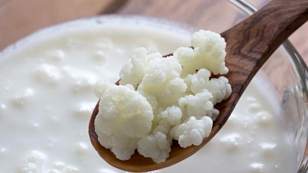 Los beneficios del kéfir: ¿es realmente mejor que el yogur?