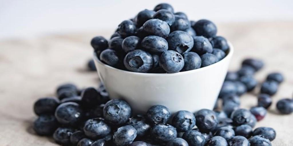 Arándanos: cuáles son sus beneficios y por qué mejora la concentración