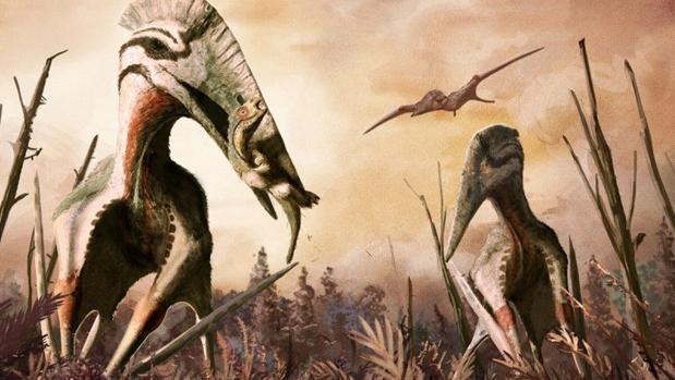 Un Terrorifico Reptil Volador Descubierto En Transilvania Según esta definición, quedan excluidos pterosaurios, reptiles voladores contemporáneos de los dinosaurios, y los plesiosaurios, los reptiles. reptil volador descubierto en transilvania