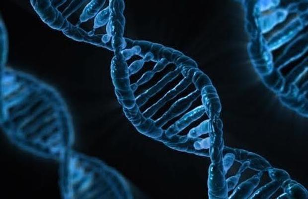 En el horizonte está investigar y encontrar nuevos tratamientos contra enfermedades hereditarias
