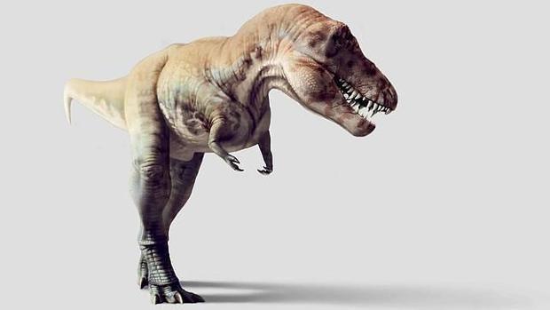 Proponen Una Teoria Sobre Los Dinosaurios Que Puede Cambiar Todos Los Libros De Texto De hecho, muchas otras criaturas de nuestro tamao se habrn encontrado en la situacin de tener que esquivar las mandbulas letales del tiranosaurio rex. los dinosaurios