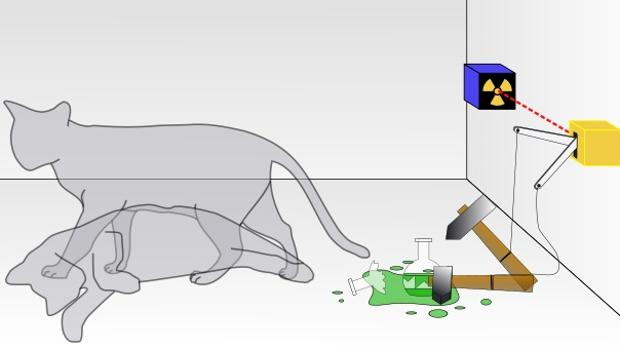 En esta situación ideal, el gato está vivo y muerto a la vez hasta que alguien lo observa