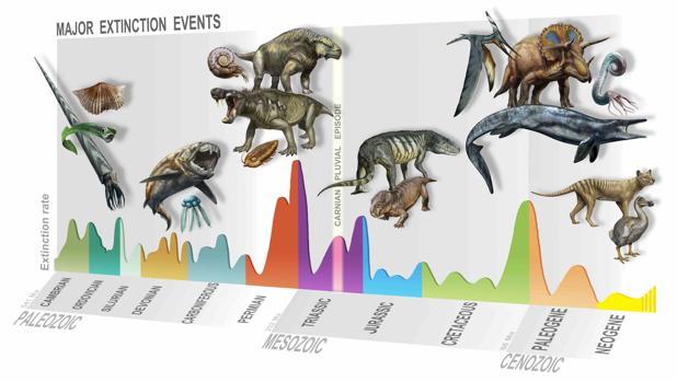La ilustración muestra las cinco grandes extinciones masivas a las que se ha enfrentado la vida en la Tierra. La línea amarilla, en el centro de la imagen, señala también el Episodio Pluvial Carniano, la nueva extinción masiva que hace 223 millones de años allanó el camino a los dinosaurios