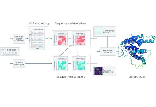 Learning process to process spatial graphs and predict the 3D structure of proteins