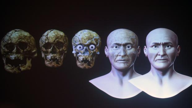 Recreación a partir del cráneo del rostro del Señor de Sipán