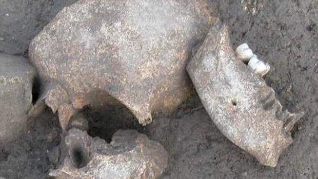 Restos humanos encontrados en el yacimiento arqueológico de Le Cailar