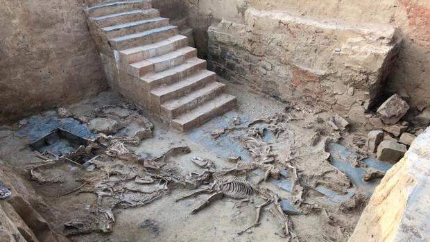 Salón con los restos de la primera hecatombe documentada, de 52 caballos, a los pies de una escalinata monumental