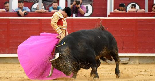 Paco Ureña, con el toro de su reencuentro