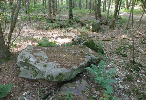 Una de las rocas sarsen de West Wood