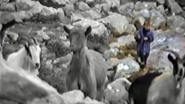 Un pequeño Luka Modric cuida a los animales del monte croata
