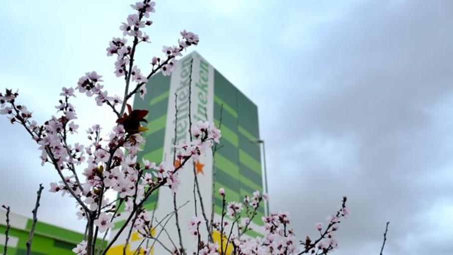 Huelga de 24 horas este miércoles en Heineken España