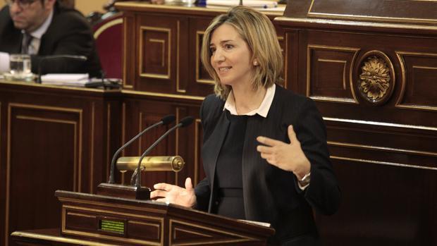 La consejera Alicia García, durante su comparecencia ante el Senado