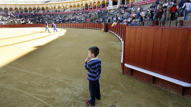 Imagen de un niño en el coso de la Maestranza de Sevilla