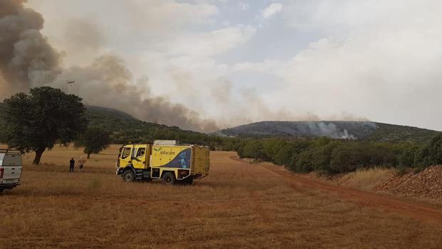 Imagen de la zona de monte afectada por el incendio