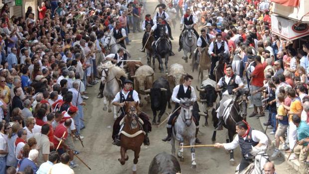 Resultado de imagen de entrada de toros y caballos