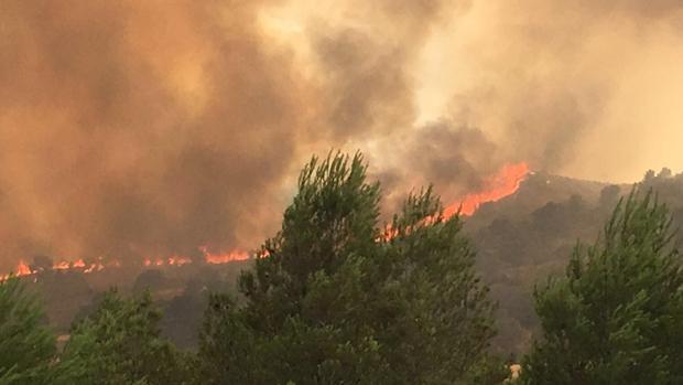 El incendio que se produjo en el municipio albaceteño de Liétor
