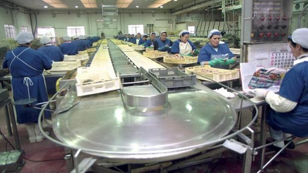 Mujeres trabajando en una fábrica de conservas gallega