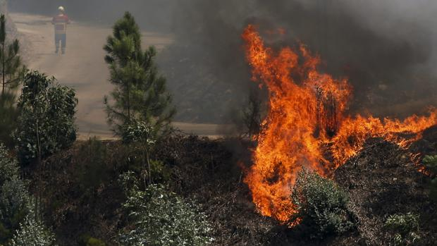 Las llamas calcinan matorral de un monte de Viana do Bolo (Orense), donde el fuego ha calcinado estos días 165 hectáreas