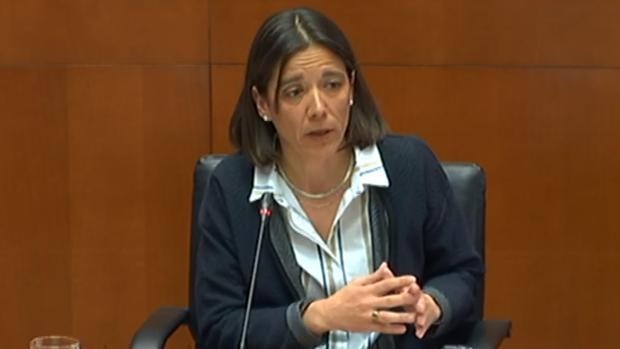 La interventora del Gobierno aragonés, Ana Gómez, durante su comparecencia en las Cortes regionales