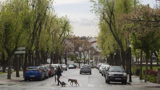 Vista del paseo de Boadilla, en Brunete (Madrid)