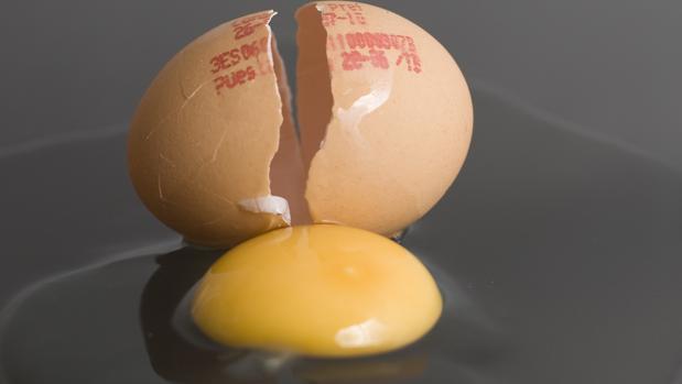 Imagen de archivo de un huevo
