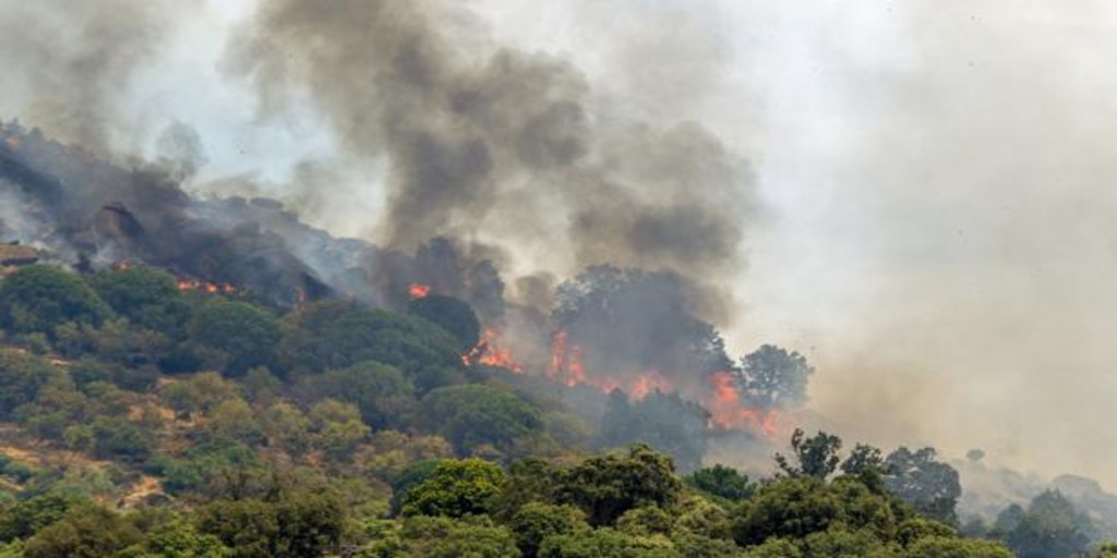 Se declara un incendio en Sevilleja de la Jara